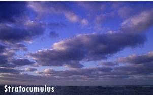 Awan Stratocumulus