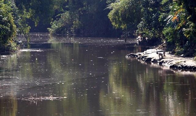 Peyebab Pencemaran Sungai