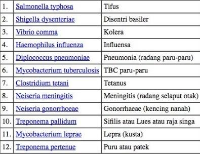 Penyakit Yang Disebabkan Oleh Bakteri