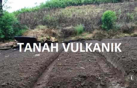 Manfaat Abu Vulkanik Gunung Berapi