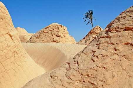 Gurun pasir kebili, Tunisia