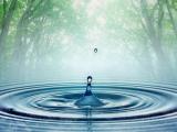 Perbedaan Air Gunung dan Air Sumur